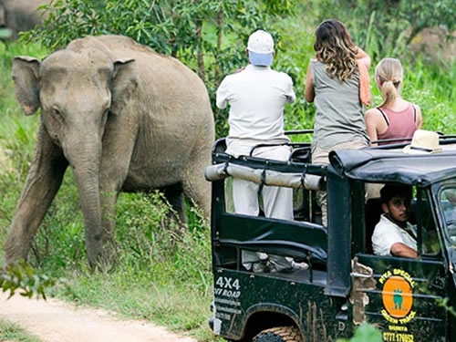 Discover Sri Lanka 11 NIGHTS  12 DAYS